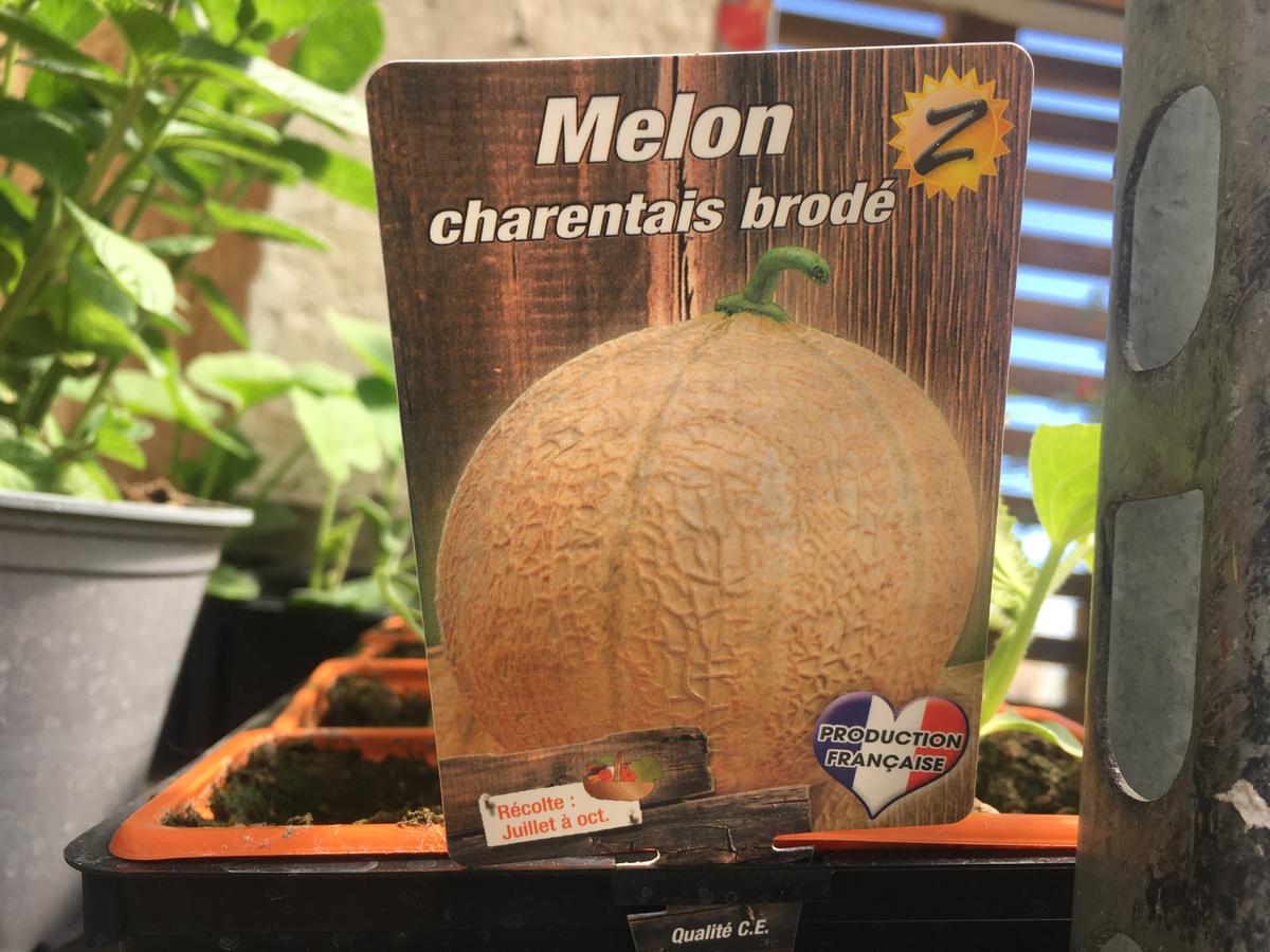 Melon charantais brodé
